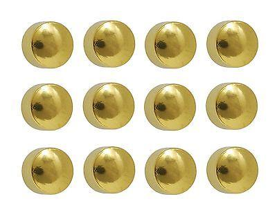 Caflon Ear Plated Surgical Steel 12 Pair