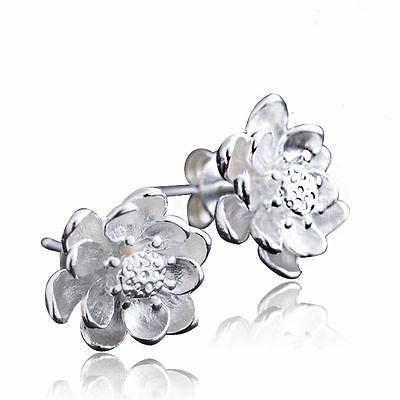 Women 925 Sterling Silver Jewelry Elegant Crystal Ear Stud E